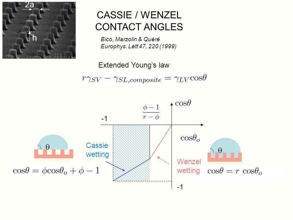 1 µm Non-wetting nano-textured surfaces : MD simulations Cottin-Bizonne & al 2003 Nature Mat 2, 237