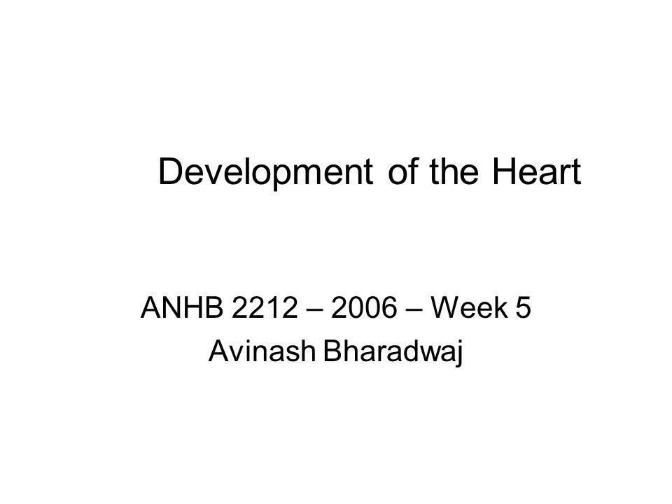 Development of the Heart ANHB 2212 – 2006 – Week 5 Avinash Bharadwaj