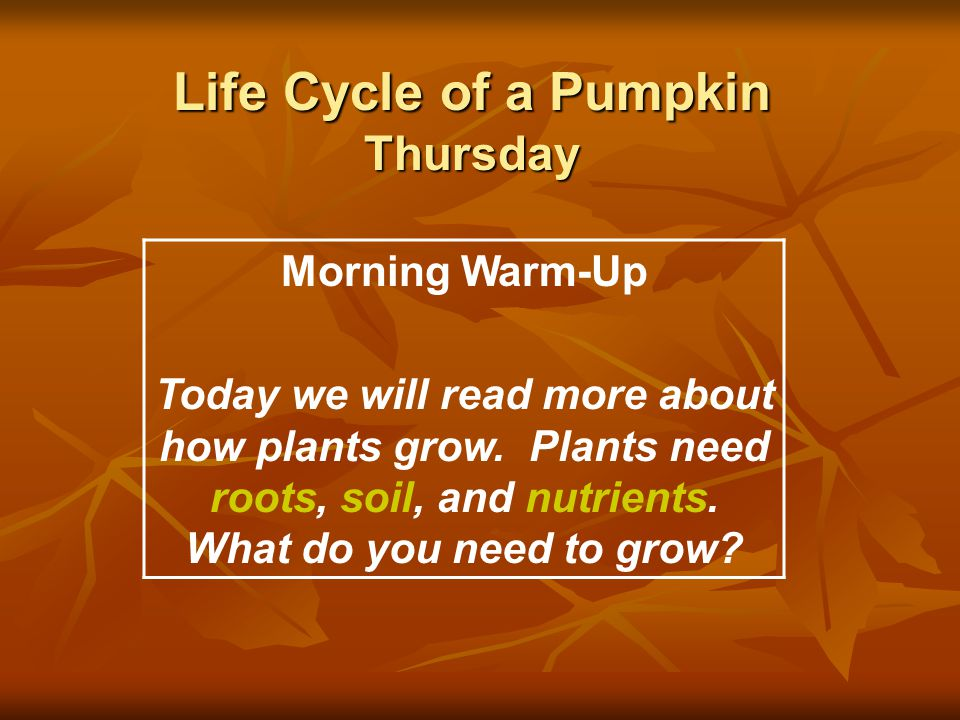 Life Cycle of a Pumpkin Thursday Morning Warm-Up Today we will read more about how plants grow. Plants need roots, soil, and nutrients. What do you ne