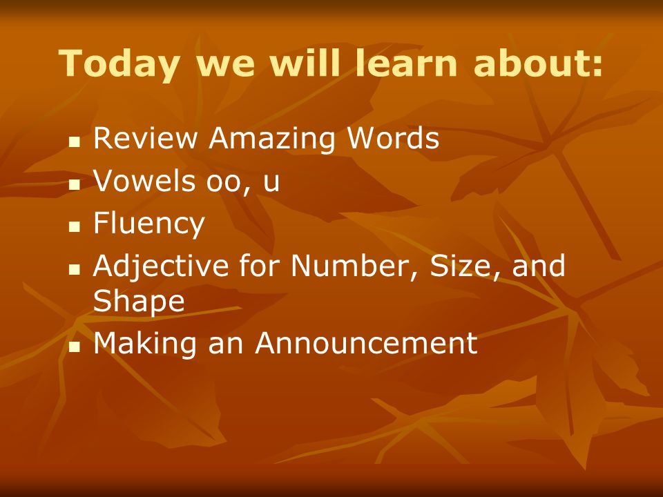 Today we will learn about: Review Amazing Words Vowels oo, u Fluency Adjective for Number, Size, and Shape Making an Announcement
