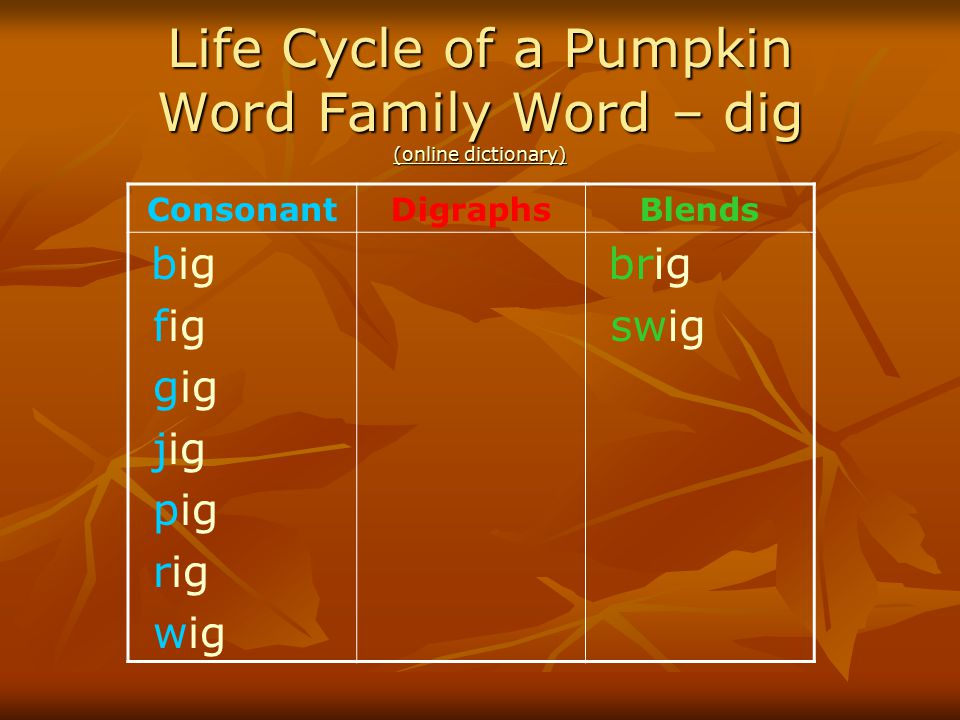Life Cycle of a Pumpkin Word Family Word – dig (online dictionary) (online dictionary) (online dictionary) ConsonantDigraphsBlends big fig gig jig pig