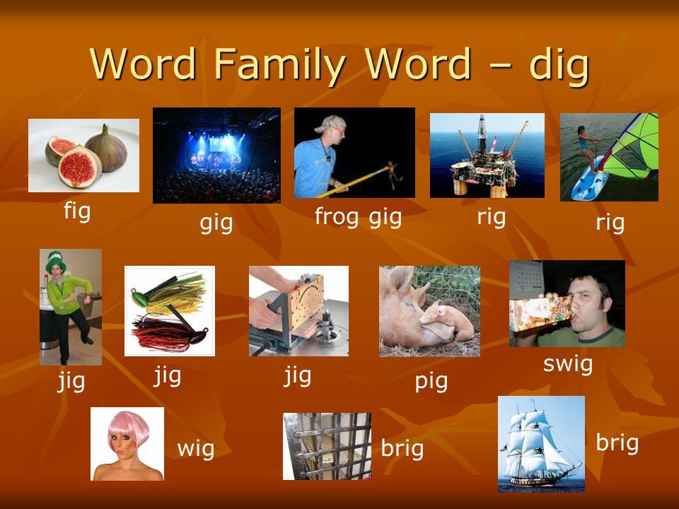 Word Family Word – dig fig gig frog gigrig jig pig swig wigbrig