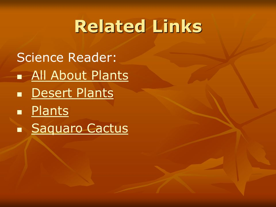 Related Links Science Reader: All About Plants Desert Plants Plants Saquaro Cactus