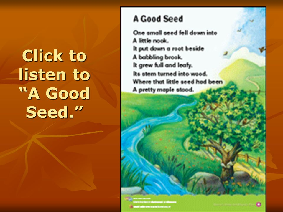 """Click to listen to """"A Good Seed."""""""