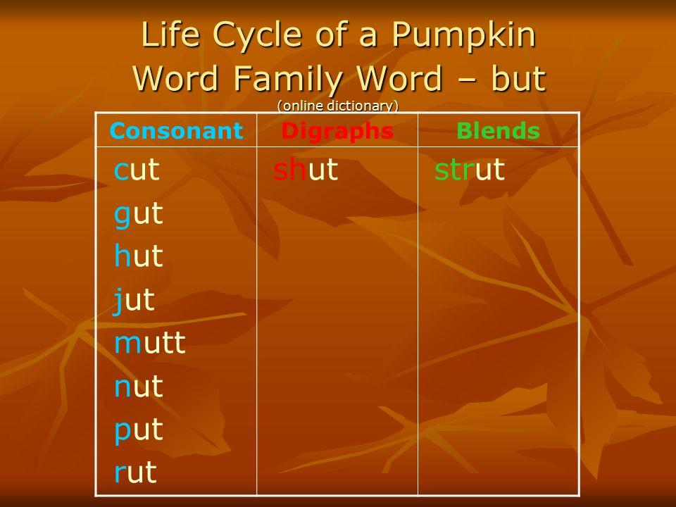Life Cycle of a Pumpkin Word Family Word – but (online dictionary) (online dictionary) (online dictionary) ConsonantDigraphsBlends cut gut hut jut mut
