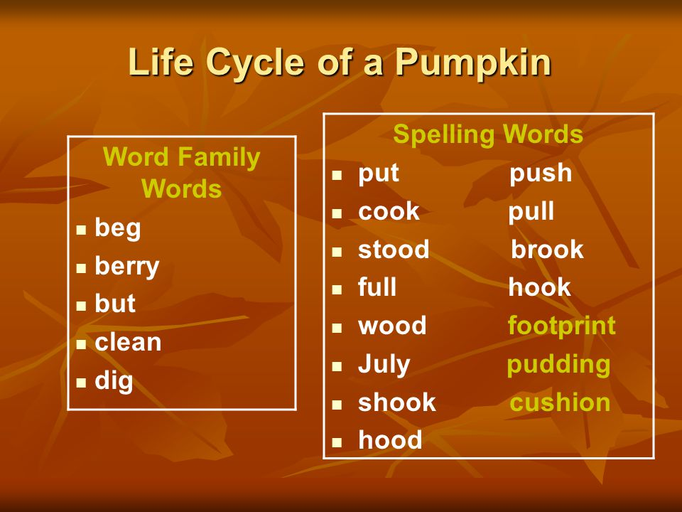 Life Cycle of a Pumpkin Word Family Words beg berry but clean dig Spelling Words put push cook pull stood brook full hook wood footprint July pudding