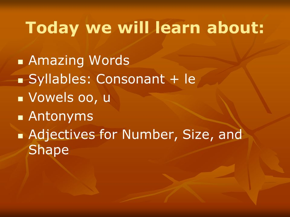 Today we will learn about: Amazing Words Syllables: Consonant + le Vowels oo, u Antonyms Adjectives for Number, Size, and Shape
