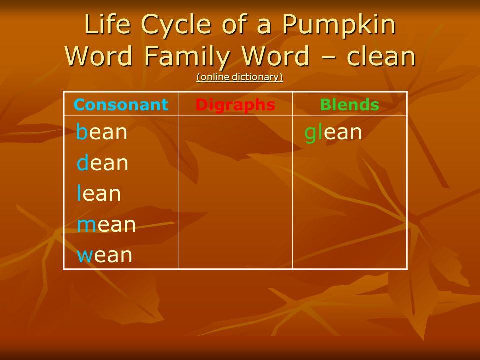 Life Cycle of a Pumpkin Word Family Word – clean (online dictionary) (online dictionary) (online dictionary) ConsonantDigraphsBlends bean dean lean me