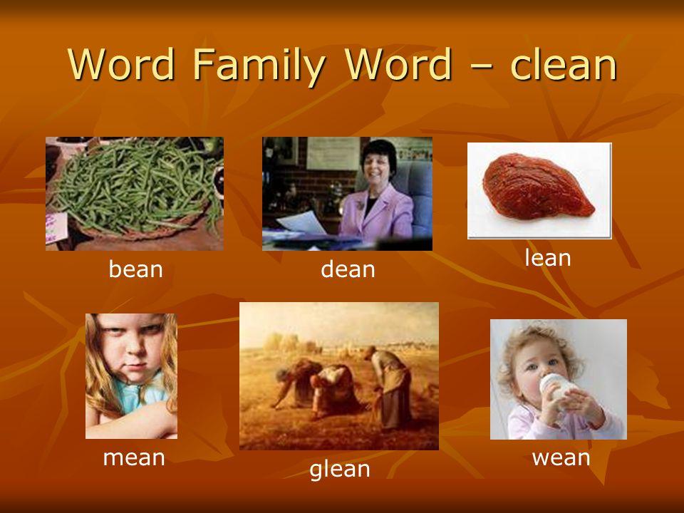 Word Family Word – clean beandean lean mean glean wean