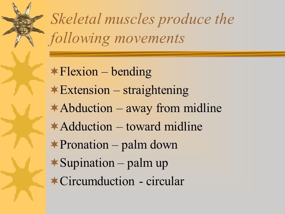 Skeletal muscles produce the following movements  Inversion – sole inward  Eversion – sole outward  Rotation – head around central axis  Protraction –forward movement parallel to ground (chin)  Retraction – backward parallel movement  Depression/elevation – Shoulders up & down