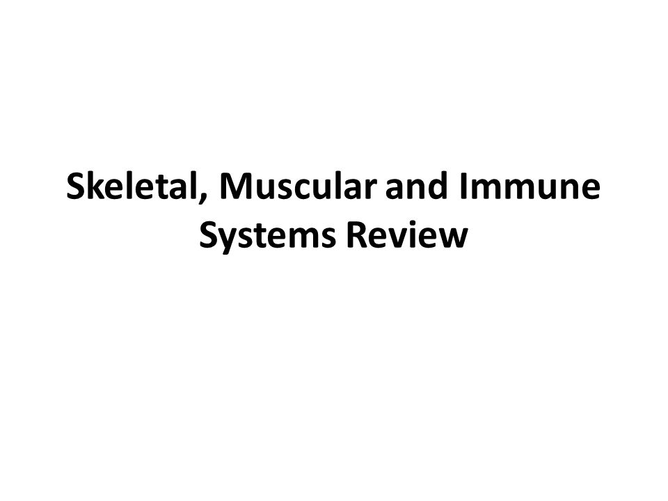 Skeletal, Muscular and Immune Systems Review