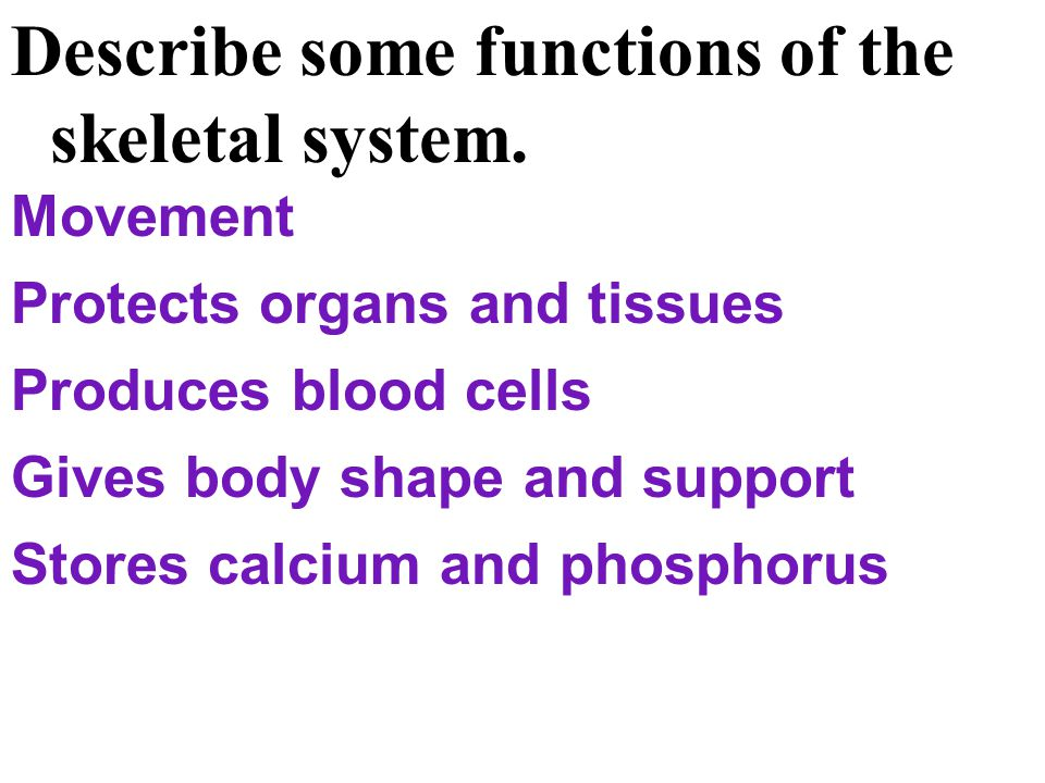Describe some functions of the skeletal system.