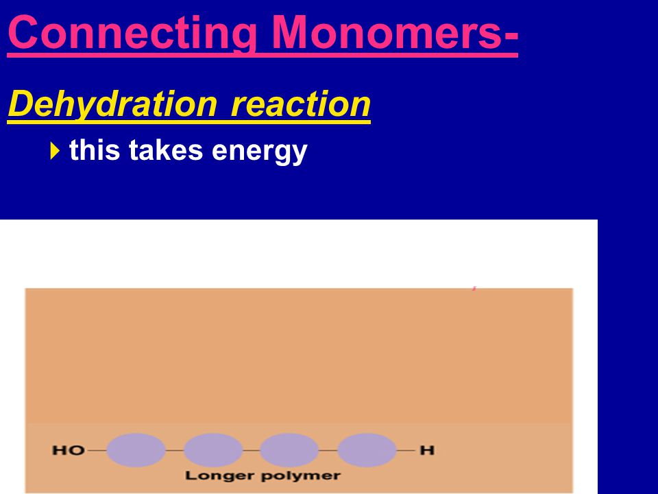 Connecting Monomers- Dehydration reaction  this takes energy Hydrolysis-  Breaking apart polymer  Adding water molecule