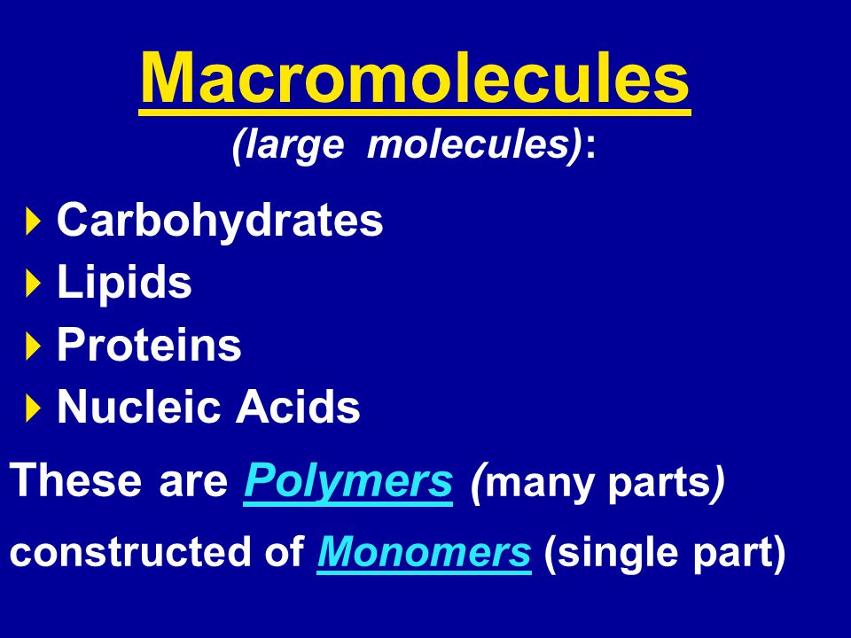Macromolecules (large molecules):  Carbohydrates  Lipids  Proteins  Nucleic Acids These are Polymers ( many parts) constructed of Monomers (single part)