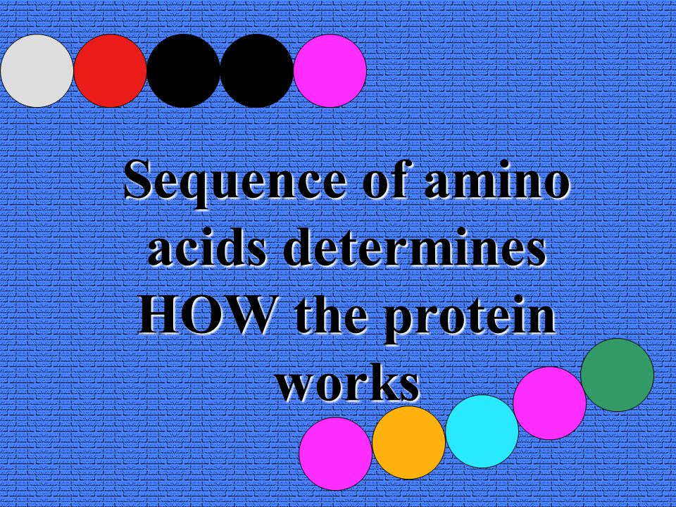 Sequence of amino acids determines HOW the protein works