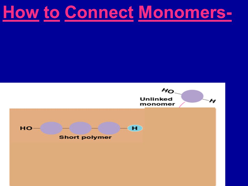 How to Connect Monomers- Hydrolysis-  Breaking apart polymer  Adding water molecule
