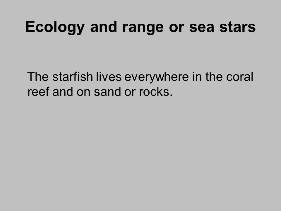 Ecology and range or sea stars The starfish lives everywhere in the coral reef and on sand or rocks.