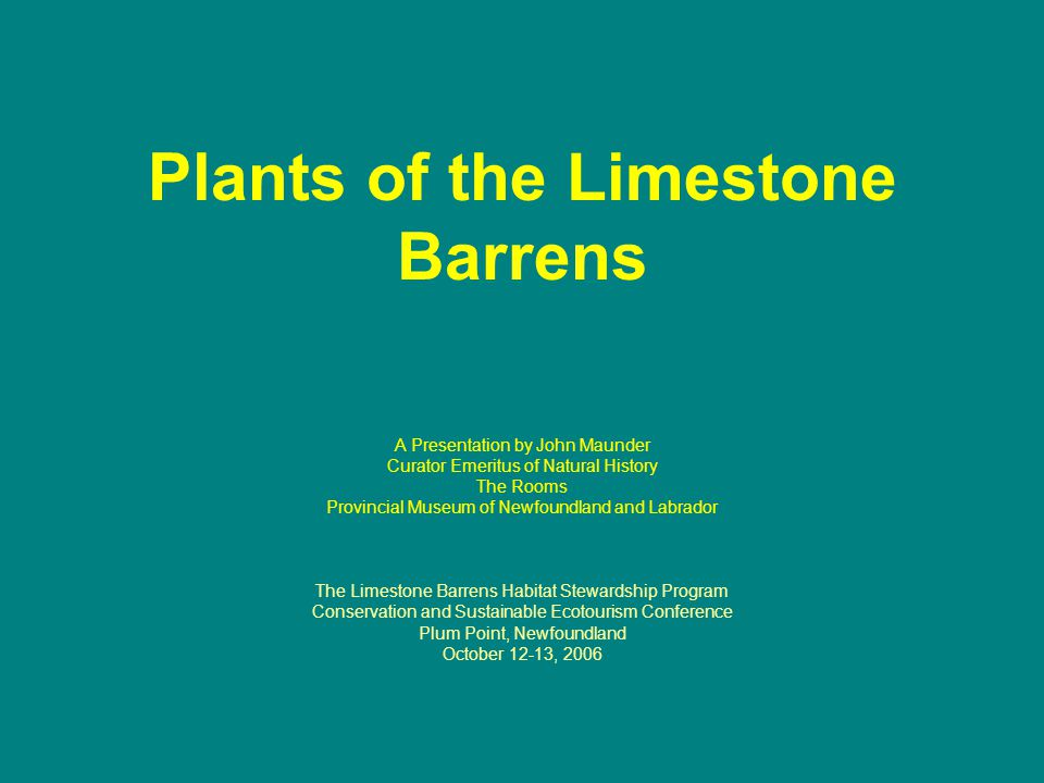 Plants of the Limestone Barrens A Presentation by John Maunder Curator Emeritus of Natural History The Rooms Provincial Museum of Newfoundland and Labrador The Limestone Barrens Habitat Stewardship Program Conservation and Sustainable Ecotourism Conference Plum Point, Newfoundland October 12-13, 2006