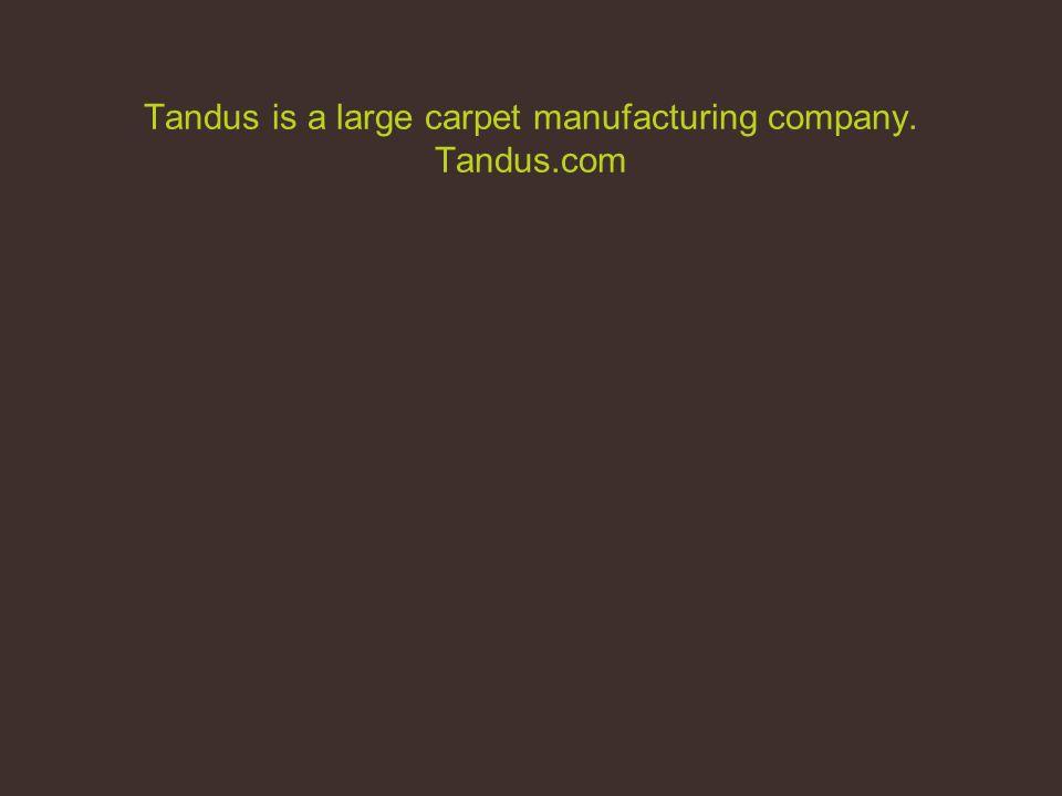 Tandus is a large carpet manufacturing company. Tandus.com
