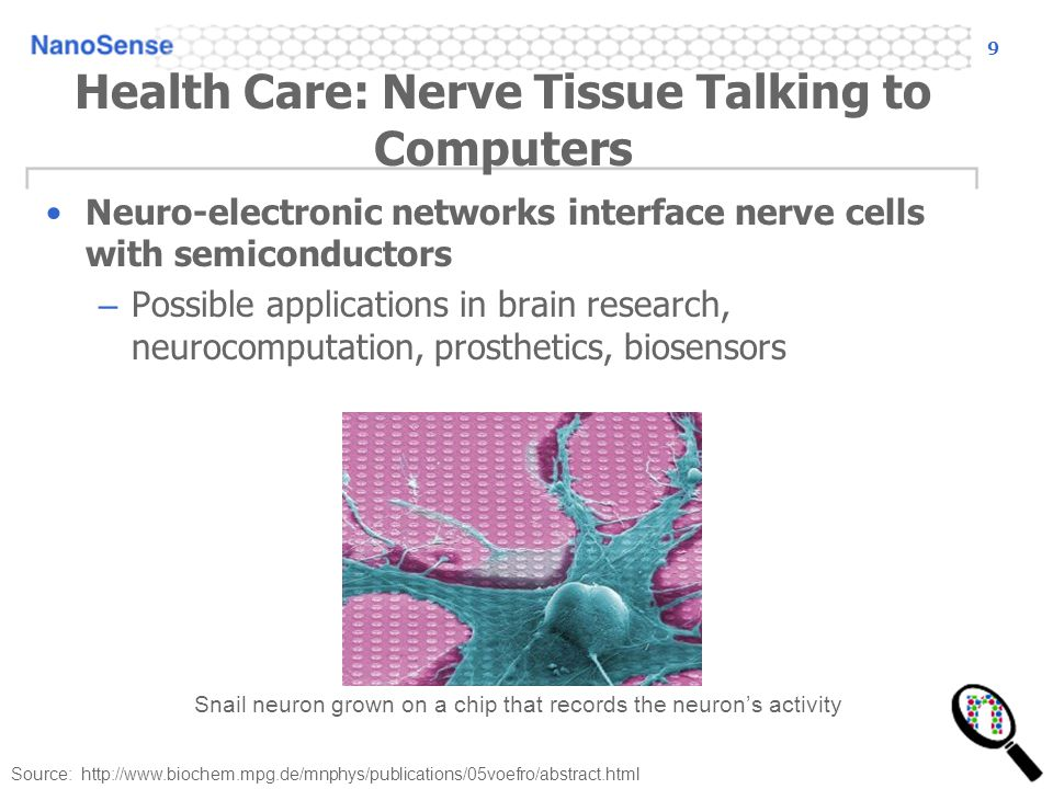 9 Health Care: Nerve Tissue Talking to Computers Neuro-electronic networks interface nerve cells with semiconductors – Possible applications in brain research, neurocomputation, prosthetics, biosensors Snail neuron grown on a chip that records the neuron's activity Source: http://www.biochem.mpg.de/mnphys/publications/05voefro/abstract.html