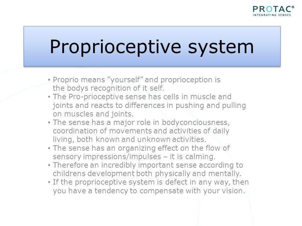 Proprioceptive system Proprio means yourself and proprioception is the bodys recognition of it self.