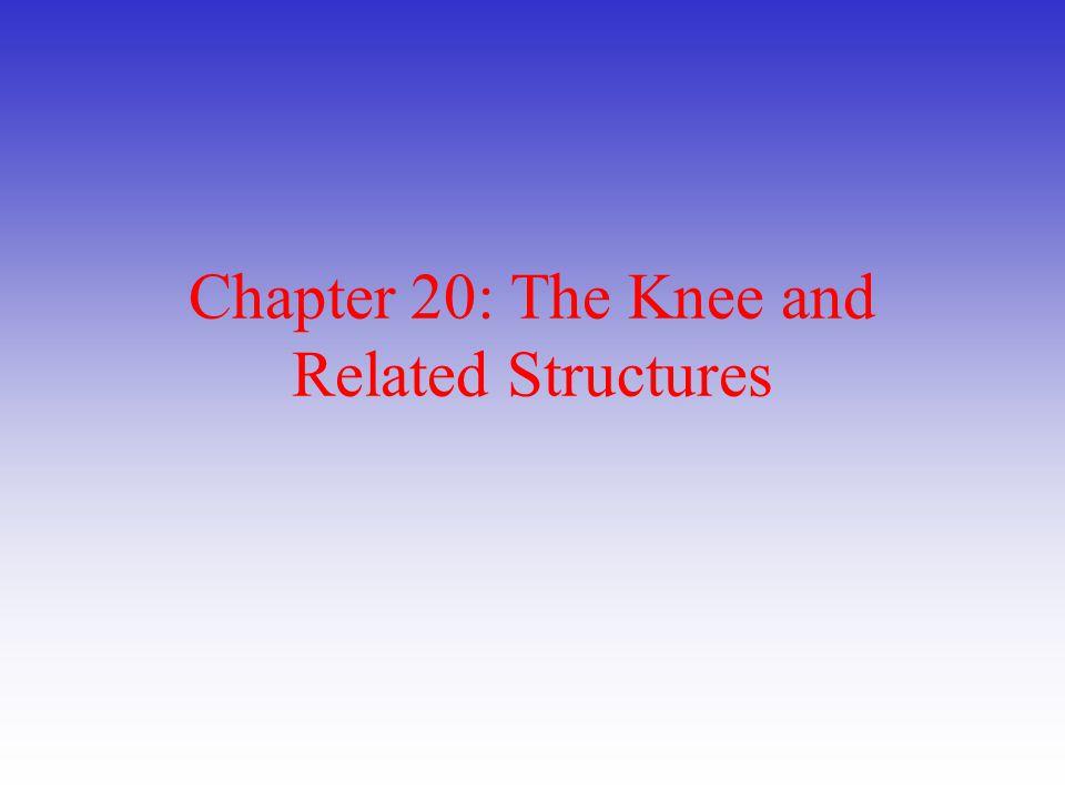 Knee and Related Structures 2.Leg Alignment Deviations a.Predispose to injury i.Patellar malalignment ii.Genu valgum iii.Genu varum iv.Genu recurvatum b.Leg-Length and Patella Discrepancies i.Anatomical leg length (true leg length) 1.ASIS to Lateral Malleolus ii.Anatomical leg length (functional leg length) 1.Umbilicus to Medial Malleolus iii.Girth Measurement iv.Q-Angle Measurement 1.