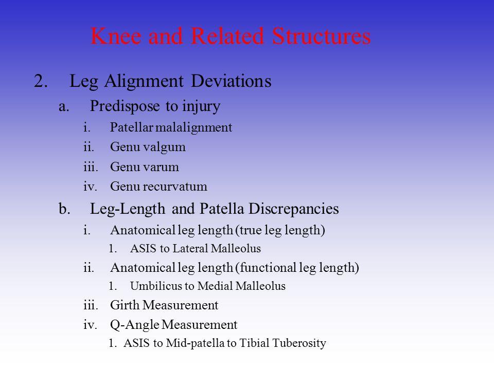 Knee and Related Structures 2.Leg Alignment Deviations a.Predispose to injury i.Patellar malalignment ii.Genu valgum iii.Genu varum iv.Genu recurvatum