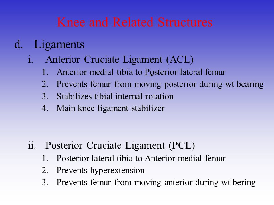 Knee and Related Structures iii.Medial Collateral Ligament (MCL) 1.Medial femoral epicondyle to Medial tibial epicondyle 2.Prevent valgus and external rotation forces 3.Has attachment to the medial meniscus iv.Lateral Collateral Ligament (LCL) 1.
