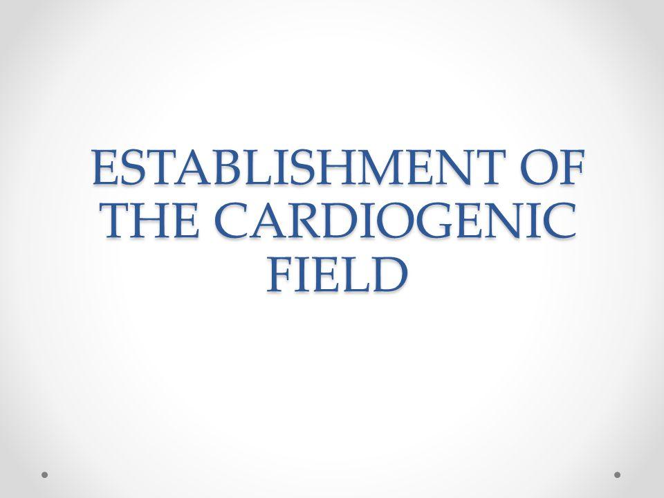 ESTABLISHMENT OF THE CARDIOGENIC FIELD