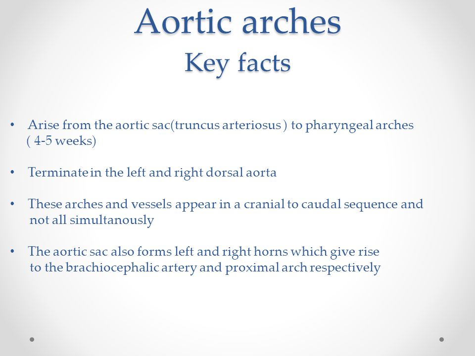 Aortic arches Key facts Arise from the aortic sac(truncus arteriosus ) to pharyngeal arches ( 4-5 weeks) Terminate in the left and right dorsal aorta