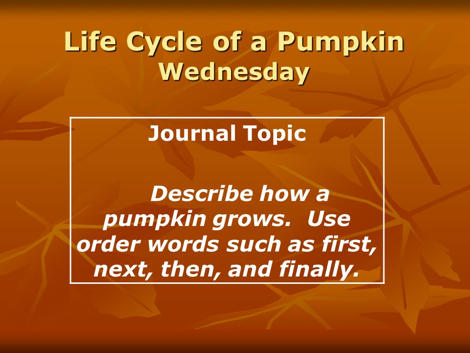 Life Cycle of a Pumpkin Wednesday Journal Topic Describe how a pumpkin grows.