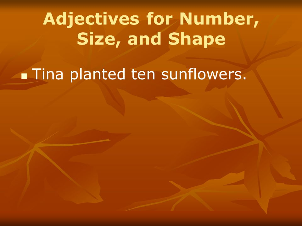 Adjectives for Number, Size, and Shape Tina planted ten sunflowers.