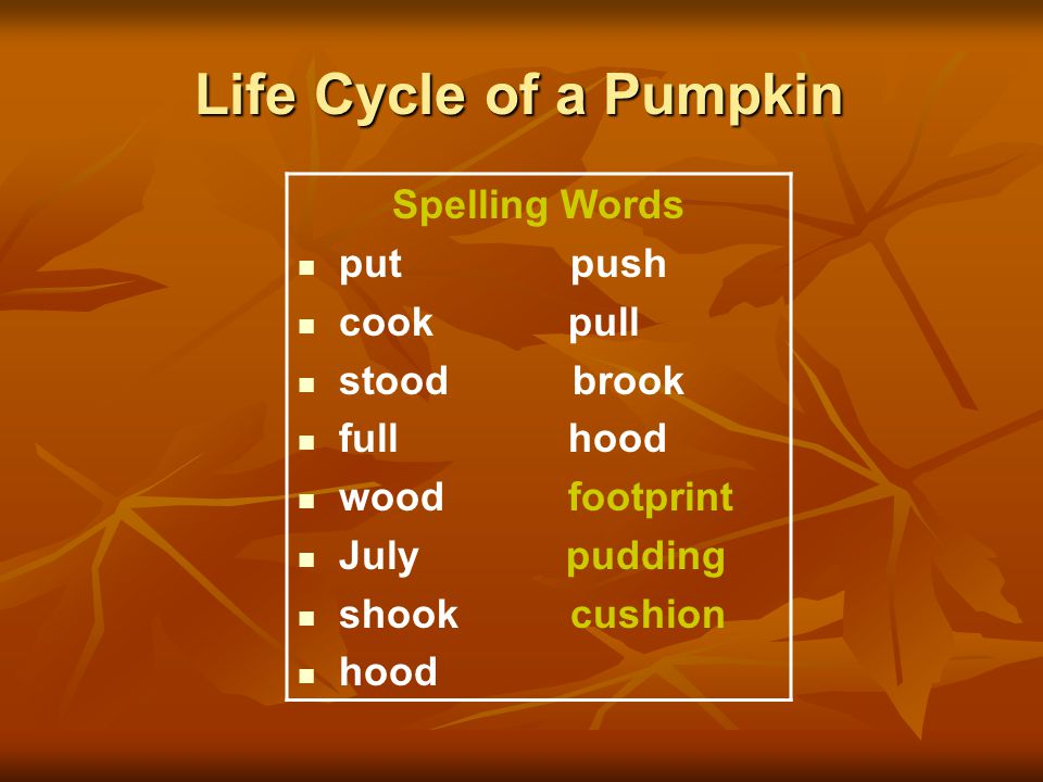 Life Cycle of a Pumpkin Spelling Words put push cook pull stood brook full hood wood footprint July pudding shook cushion hood