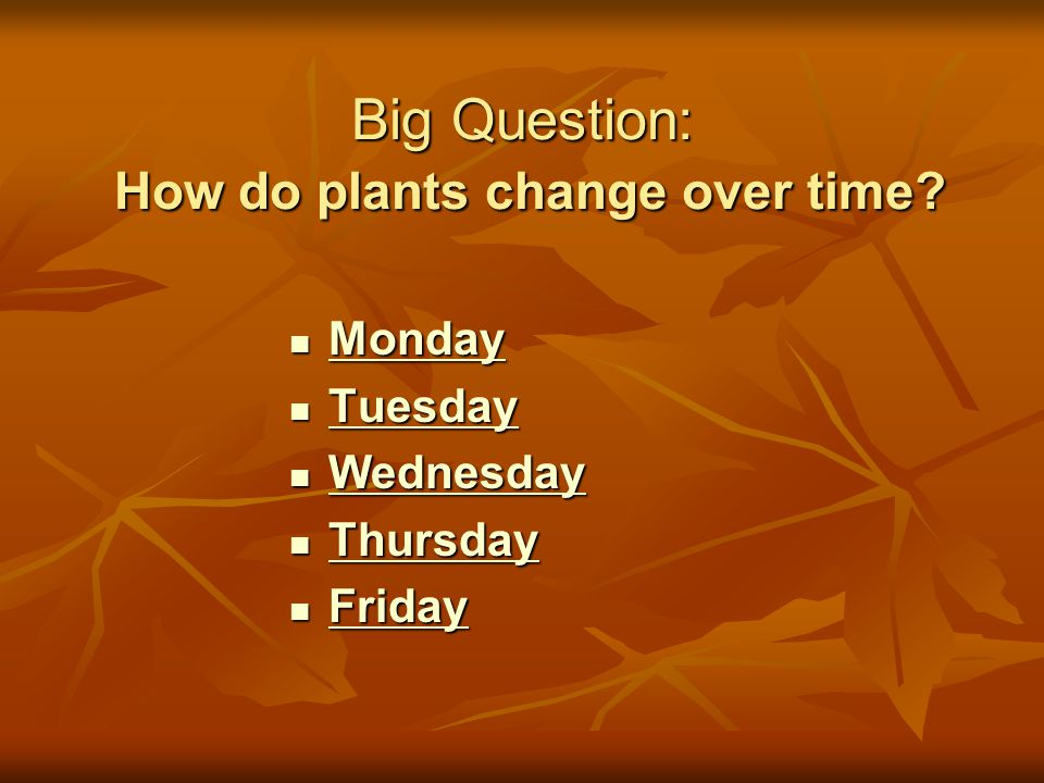 Big Question: How do plants change over time.