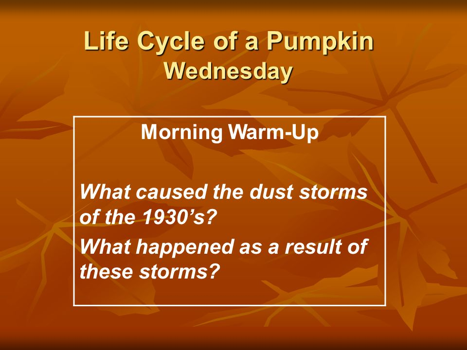 Life Cycle of a Pumpkin Wednesday Morning Warm-Up What caused the dust storms of the 1930's.