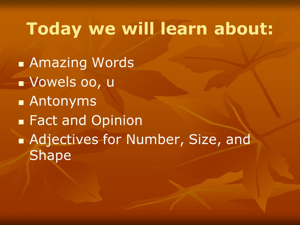 Today we will learn about: Amazing Words Vowels oo, u Antonyms Fact and Opinion Adjectives for Number, Size, and Shape