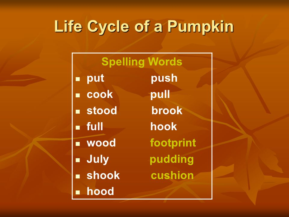 Life Cycle of a Pumpkin Spelling Words put push cook pull stood brook full hook wood footprint July pudding shook cushion hood