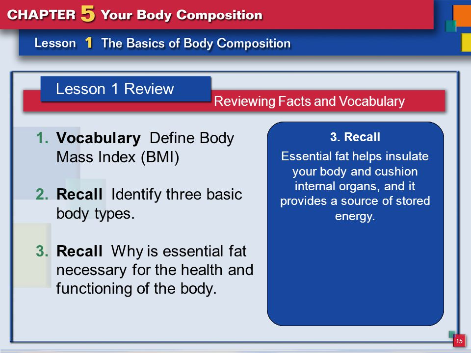 15 Lesson 1 Review 1.Vocabulary Define Body Mass Index (BMI) 2.Recall Identify three basic body types.