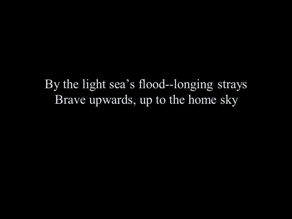 By the light sea's flood--longing strays Brave upwards, up to the home sky