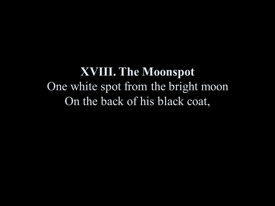 XVIII. The Moonspot One white spot from the bright moon On the back of his black coat,