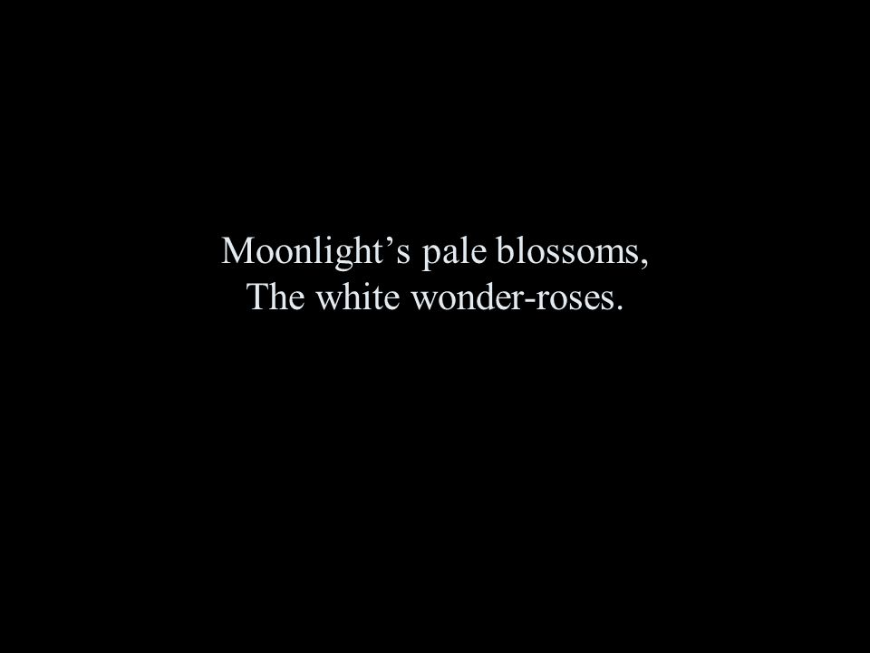 Moonlight's pale blossoms, The white wonder-roses.