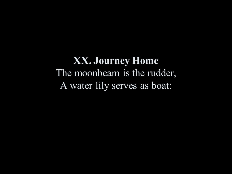 XX. Journey Home The moonbeam is the rudder, A water lily serves as boat: