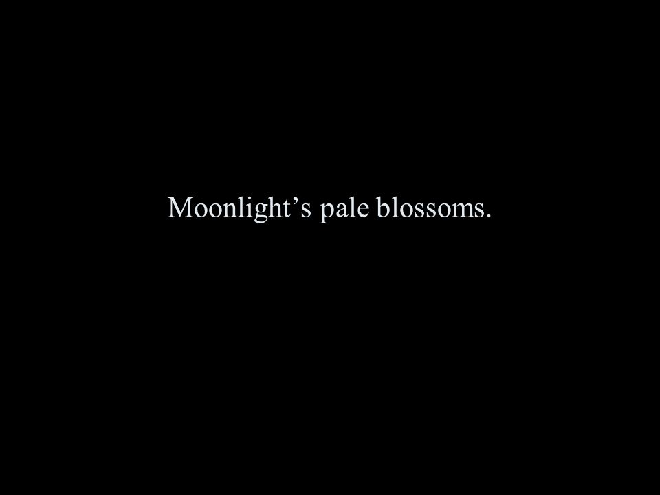 Moonlight's pale blossoms.