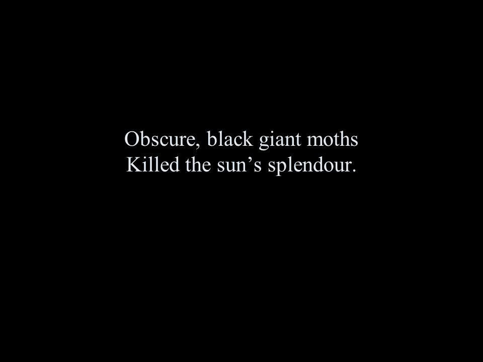 Obscure, black giant moths Killed the sun's splendour.