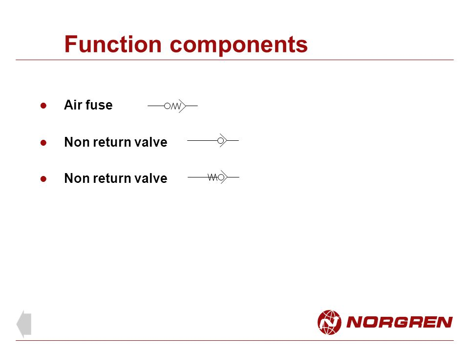 Function components Air fuse Non return valve