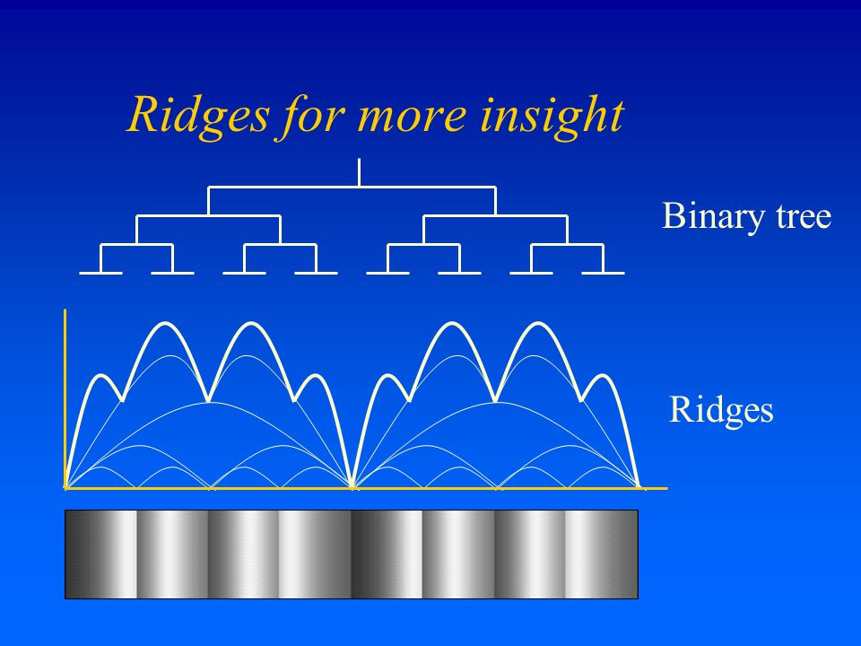 Ridges for more insight Binary tree Ridges