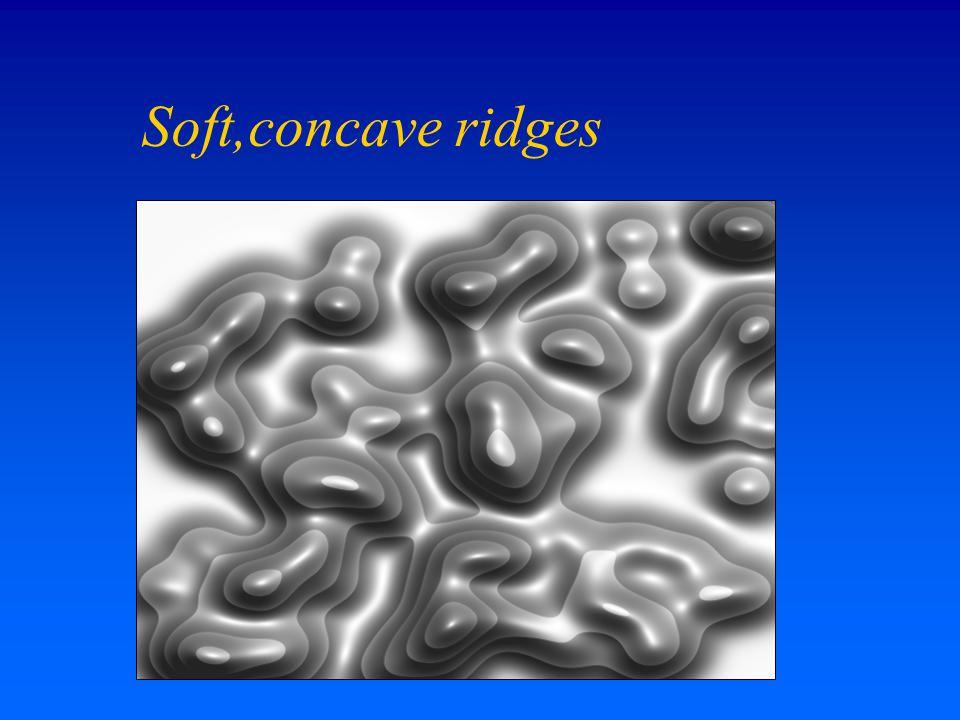 Soft,concave ridges