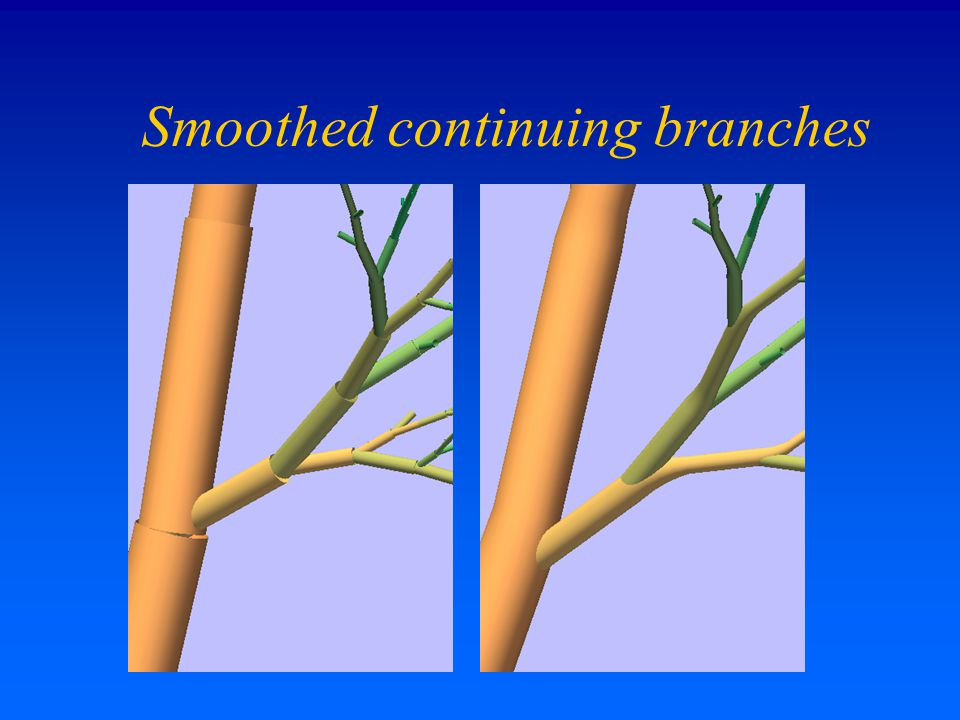 Smoothed continuing branches
