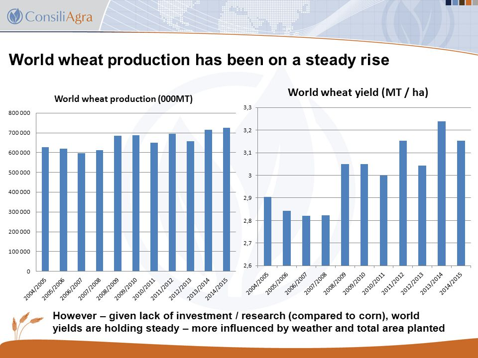 World wheat production has been on a steady rise However – given lack of investment / research (compared to corn), world yields are holding steady – more influenced by weather and total area planted