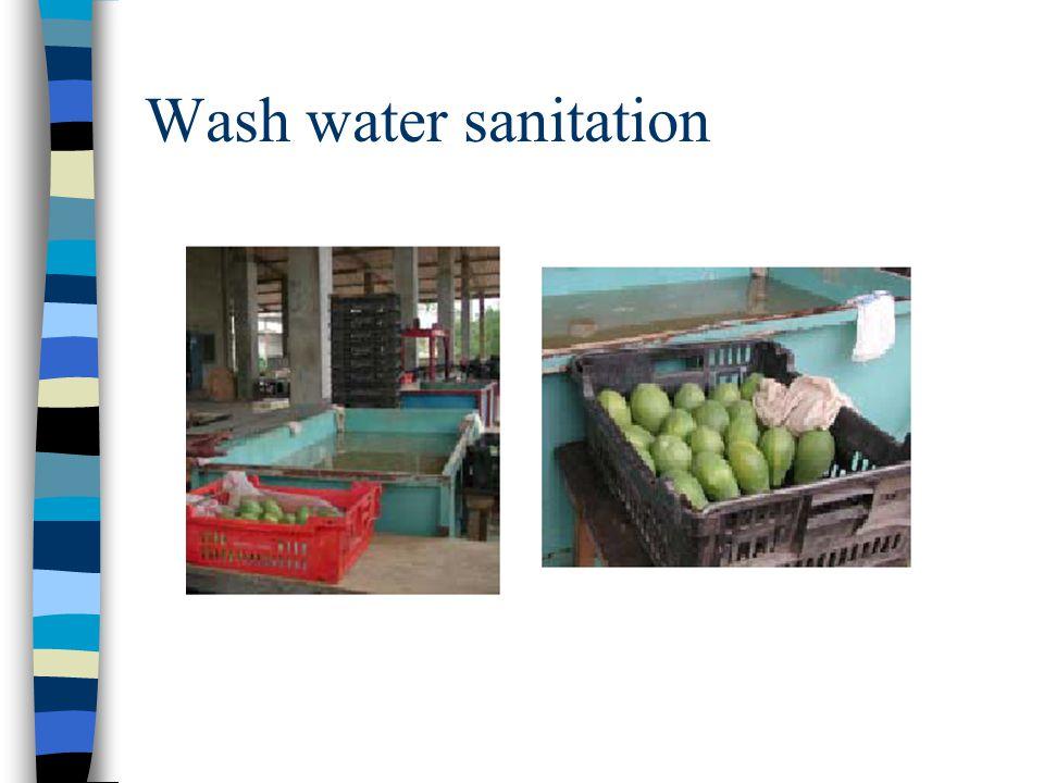 Wash water sanitation